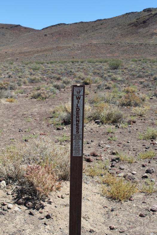 Death Valley Wilderness Marker